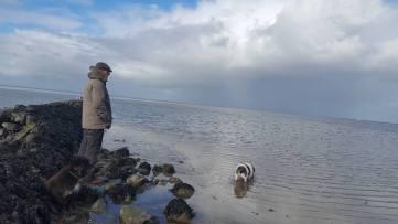 Der alte Mann_Momo und das Meer