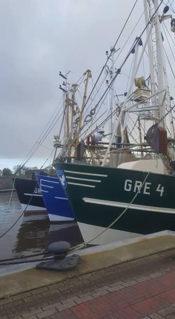 Krabbenkutterflotte I